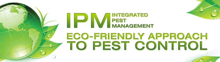 integrated-pest-management INTEGRATED PEST MANAGMENT